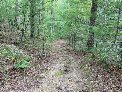 61.13 AC INDIAN MEADOW, Wytheville, VA 24382 - Photo 1