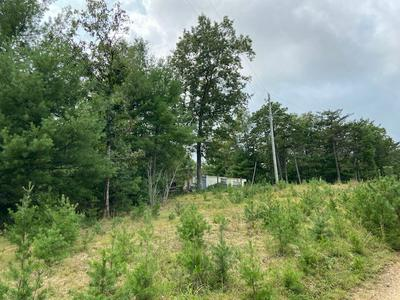 12.65 AC GRIFFITH KNOB, Wytheville, VA 24382 - Photo 2