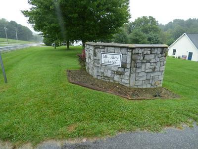 224 ESTATE DR, Rural Retreat, VA 24368 - Photo 2