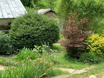 2064 ELASTIC PLANT RD, Stuart, VA 24171 - Photo 2