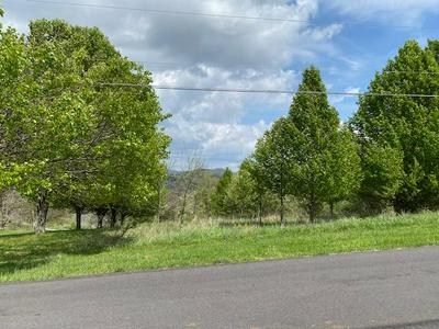 TBD G B SHORTT, Castlewood, VA 24224 - Photo 1