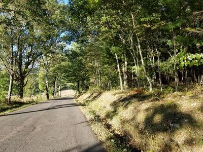 TBD DRY ROAD, Speedwell, VA 24374 - Photo 1