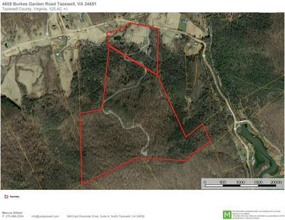 4608 BURKES GARDEN RD, Tazewell, VA 24651 - Photo 2