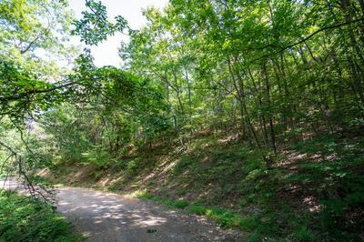 TBD STOOTS MOUNTAIN ROAD, Austinville, VA 24312 - Photo 2