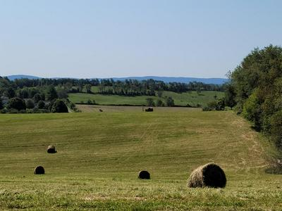 TBD ALLIS CHALMER ROAD, Rural Retreat, VA 24368 - Photo 1