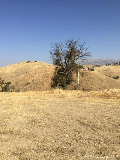 0 CEDAR GLEN DR. LOT #244, Tehachapi, CA     0 - Photo 2