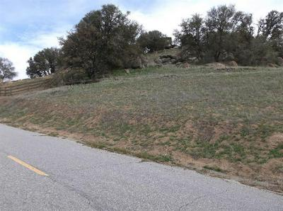 0 LOT 58 QUAIL DRIVE, Tehachapi, CA 93561 - Photo 2