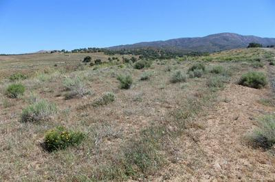 0 PEARCE DR LOT 158, Tehachapi, CA 93561 - Photo 2