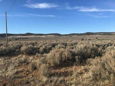 SR 567, Carson, NM 87517 - Photo 1