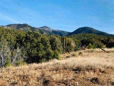 OFF LA CEJA RD, Valdez, NM 87580 - Photo 2