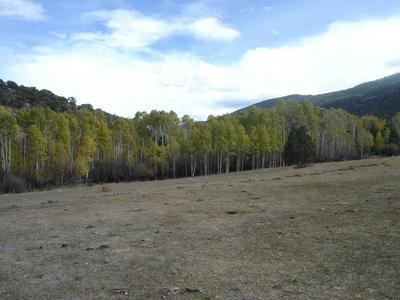 117 ARELLANO RD, Amalia, NM 87512 - Photo 1