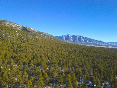 TRACT F TURKEY SPRINGS RD, Valdez, NM 87580 - Photo 2