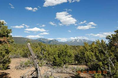 DUVAL ROAD, Valdez, NM 87580 - Photo 1