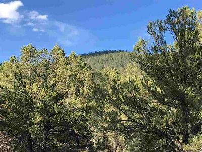 TRACT A2 TURKEY SPRINGS ROAD, Valdez, NM 87580 - Photo 1