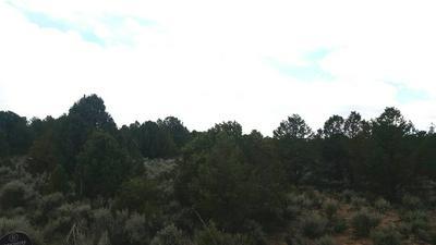 S CARSON ROAD, Carson, NM 87517 - Photo 2