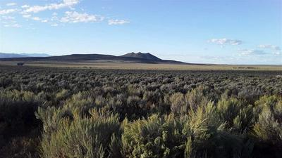 810 STATE HIGHWAY 567, Carson, NM 87517 - Photo 1
