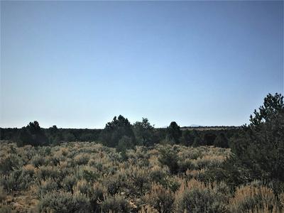OFF COMANCHE TRAIL, Carson, NM 87517 - Photo 2