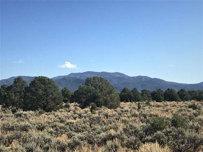 OFF COMANCHE TRAIL, Carson, NM 87517 - Photo 1
