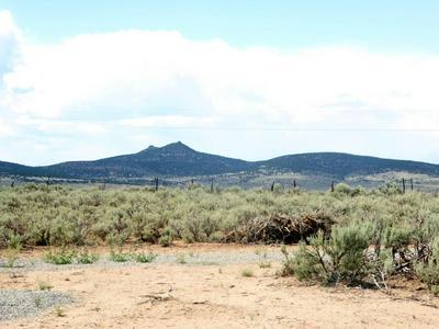 SR 567, Carson, NM 87517 - Photo 2