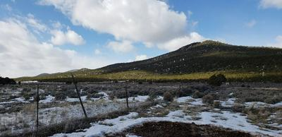 OFF STATE HWY 387, Cerro, NM 87519 - Photo 1