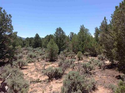 PETACA RD, Carson, NM 87517 - Photo 1