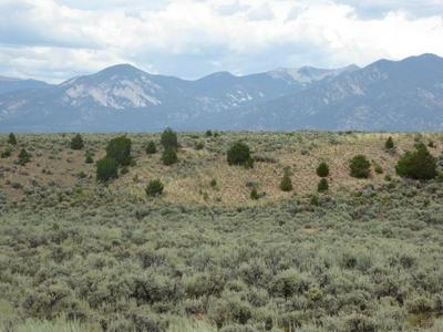 TRACT B2 GIJOS WAY CR 110, Ranchos de Taos, NM 87557 - Photo 2