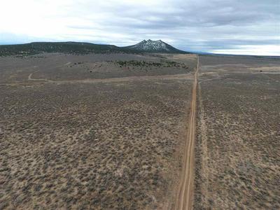 000 STAR ROAD, Carson, NM 87517 - Photo 2