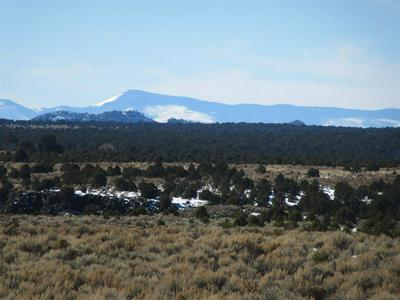 OFFMATISSE ROAD, Carson, NM 87517 - Photo 1