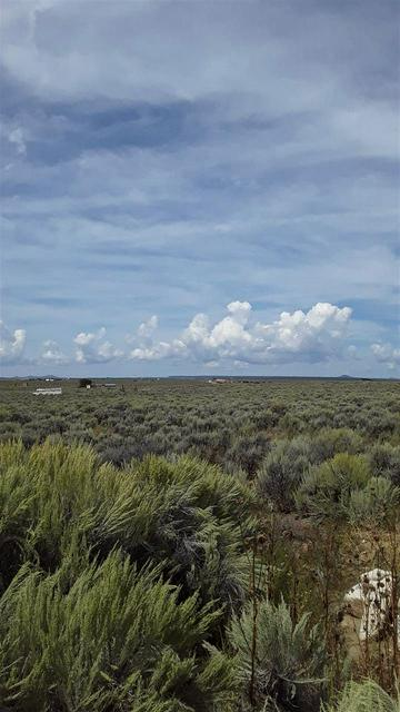 810 STATE HIGHWAY 567, Carson, NM 87517 - Photo 2