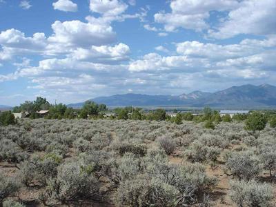 ADJ CAMINO DE MONDRAGON, Taos, NM 87571 - Photo 2