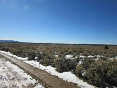 OFFMATISSE ROAD, Carson, NM 87517 - Photo 2
