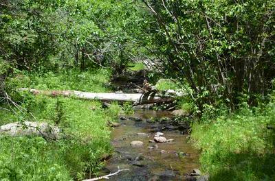 584 ACRES NM HIGHWAY 120, Ocate, NM 87710 - Photo 1