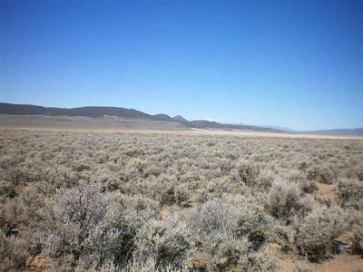 ON COSTILLA BLVD, Amalia, NM 87512 - Photo 1