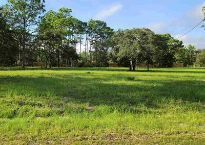 15 JER BE LOU BLVD, PANACEA, FL 32346 - Photo 1