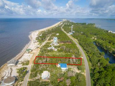 1358 CHIP MORRISON DR, ALLIGATOR POINT, FL 32346 - Photo 2