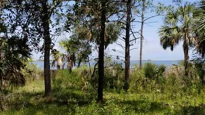 XX PARADISE LANE, PANACEA, FL 32346 - Photo 1