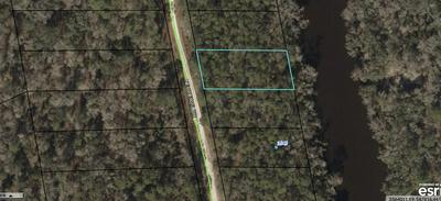 VACANT NE CHERVIL DR, LEE, FL 32059 - Photo 2