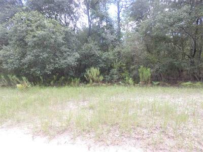 VACANT NE RIVER COUNTRY TRAIL # 0, MADISON COUNTY, FL 32059 - Photo 2
