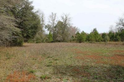 3758 SW FLORIDENA RD # 0, MADISON COUNTY, FL 32340 - Photo 1