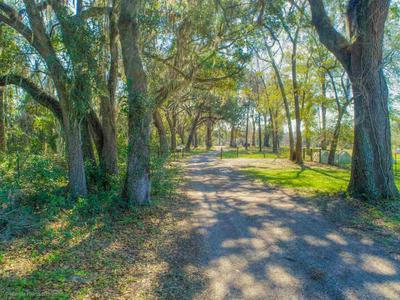 704 BARNES RD, MONTICELLO, FL 32344 - Photo 2