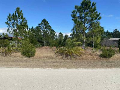 000 OSPREY LOCATION RE CIRCLE, PERRY, FL 32348 - Photo 1