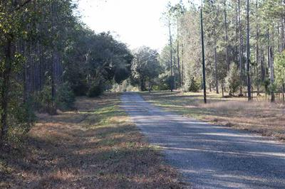 VACANT SW 1 FEDERAL ROAD, GREENVILLE, FL 32331 - Photo 1