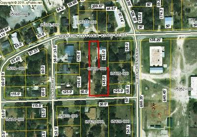 1405 MARTIN LUTHER KING AVE, PERRY, FL 32348 - Photo 1
