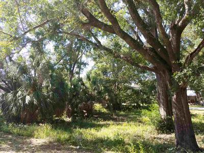 LOTS 1, CARRABELLE, FL 32322 - Photo 2