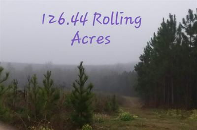 3702 NE ROCKY FORD ROAD # AGRICULTURE, MADISON, FL 32340 - Photo 1