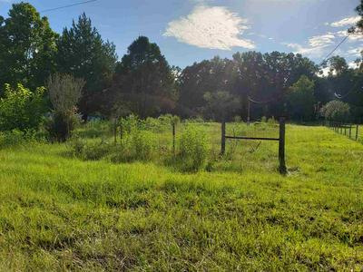 851 SE REMINGTON DR, LEE, FL 32059 - Photo 1