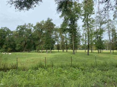 VACANT NE RUTHERFORD ROAD, LEE, FL 32059 - Photo 2