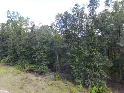LOT 16 NW 25TH TERRACE, JENNINGS, FL 32053 - Photo 1