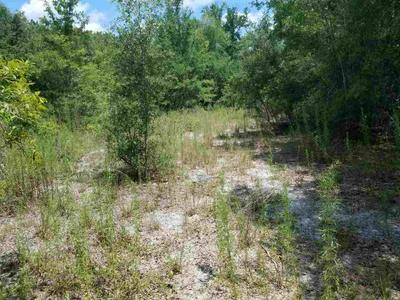 TBD SW CR 240 # LOT 9, Lake City, FL 32024 - Photo 2