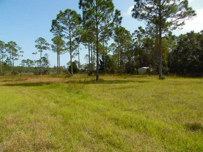 647 MILL RD, CARRABELLE, FL 32322 - Photo 1